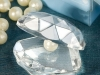 scoica-cristal_14-lei
